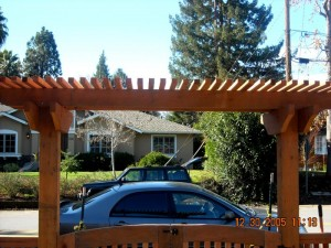double swing entry gate with trellis 3