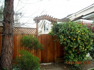 gate entry trellis